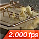 Cracker is Falling on a Mousetrap - VideoHive Item for Sale