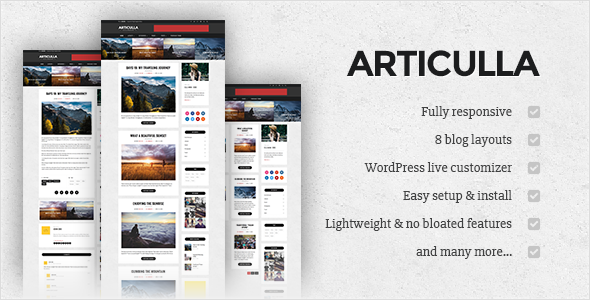 Articulla – Responsive WordPress Blog Theme