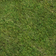 Ground_Grass_Texture_Tile002 - 3DOcean Item for Sale
