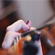 Musicians Playing Violin - VideoHive Item for Sale
