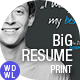 BiG Resume/CV & Reference - GraphicRiver Item for Sale