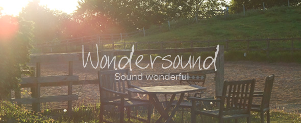 Wondersound logo box banner2