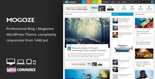 Mogoze - Responsive Magazine WordPress Theme