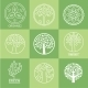 Tree. Collection Of Design Elements - GraphicRiver Item for Sale