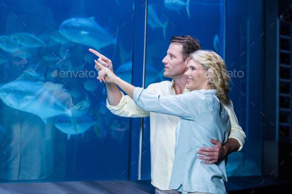 Happy couple pointing a fish tank at the aquarium - Stock Photo - Images