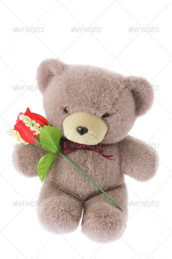 Teddy Bear with Red Rose - Stock Photo - Images