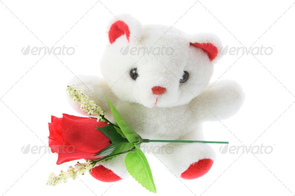 Teddy Bear with Red Roses - Stock Photo - Images