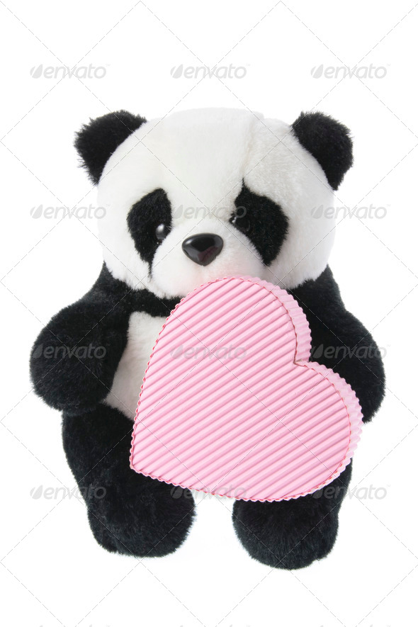 Panda Soft Toy with Gift Box - Stock Photo - Images