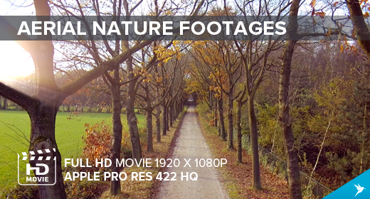 Aerial Nature Footages
