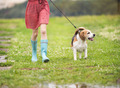 Young woman in wellies walk her dog - PhotoDune Item for Sale