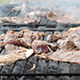 Pork Chops and Steaks on the Grill - VideoHive Item for Sale