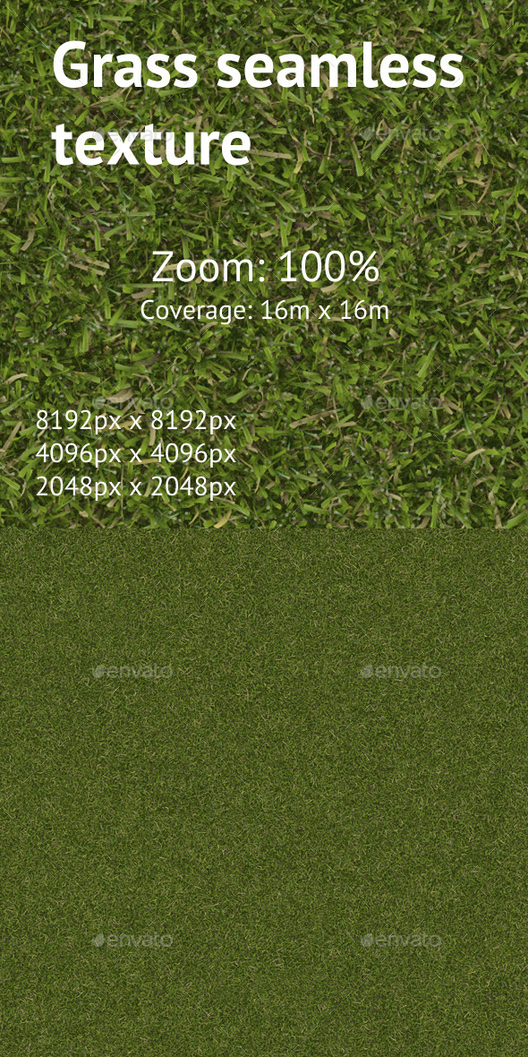 Seamless texture of the lawn grass - 3DOcean Item for Sale
