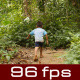 Little Boy Walking On Forest Trail - VideoHive Item for Sale
