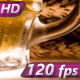 Steamy Mug of Lager - VideoHive Item for Sale