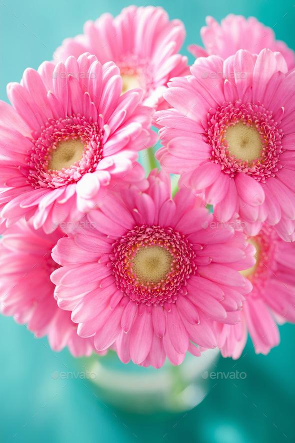 beautiful pink gerbera flowers bouquet in vase - Stock Photo - Images