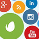 Social Media Network - Logo Opener - VideoHive Item for Sale