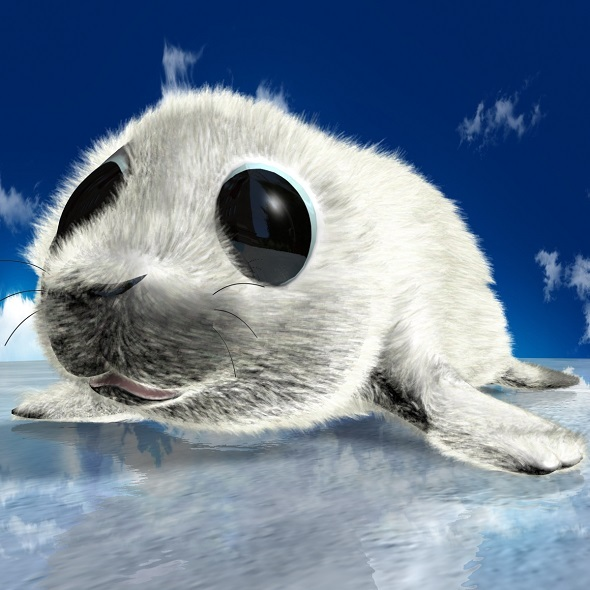 Cartoon Baby Seal Rigged - 3DOcean Item for Sale