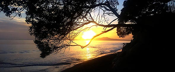 Mairangi%20bay%20beach%20walk%20590 242