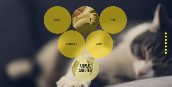 Animal Shelter Muse Template With Gumroad Shop - Creative Muse Templates