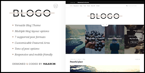 Blogo – Responsive Blog WordPress Theme