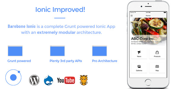 Barebone Ionic - Full Application - CodeCanyon Item for Sale
