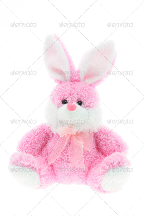 Easter Bunny - Stock Photo - Images
