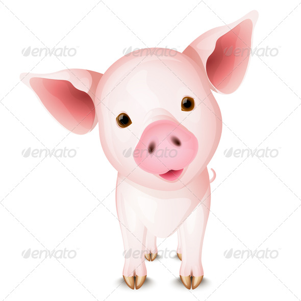 Little pink pig - Animals Characters