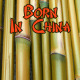 Born In China - AudioJungle Item for Sale