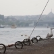 Sea Gull And Landscape Golden Horn In Istanbul - VideoHive Item for Sale