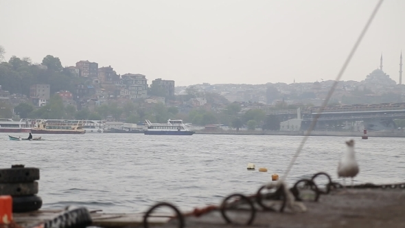 Sea Gull And Landscape Golden Horn In Istanbul