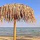 Beach Umbrella - VideoHive Item for Sale