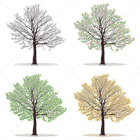 Four Seasons Trees - Seasons Nature