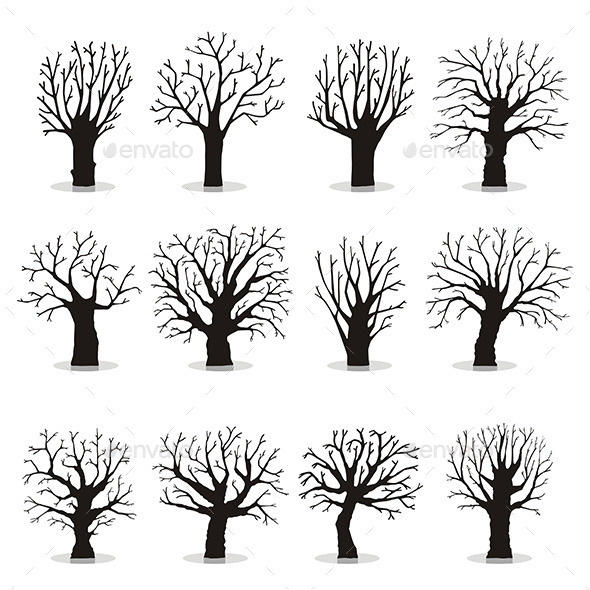 Trees Silhouettes - Organic Objects Objects