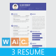 Flat & Clean Resume CV - GraphicRiver Item for Sale
