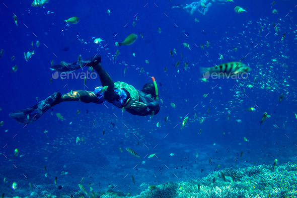 Snorkeling in the Tropical Water - Stock Photo - Images