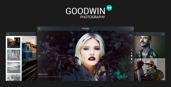 Photography & Video GoodWin WordPress Theme