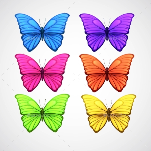 Collection Of Color Butterfly Vector Icons. Vector - Decorative Symbols Decorative