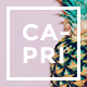Capri - A Hot Multi-Purpose Theme - ThemeForest Item for Sale