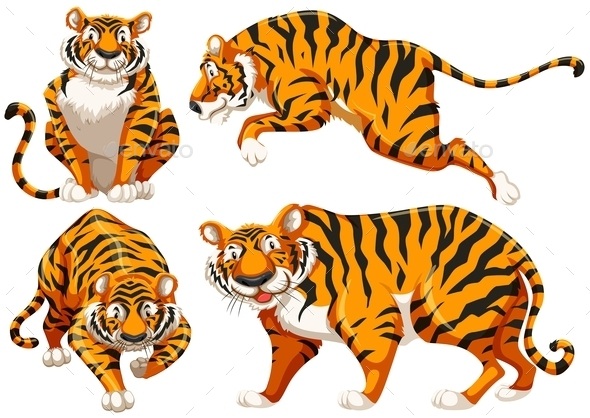 Tigers - Animals Characters