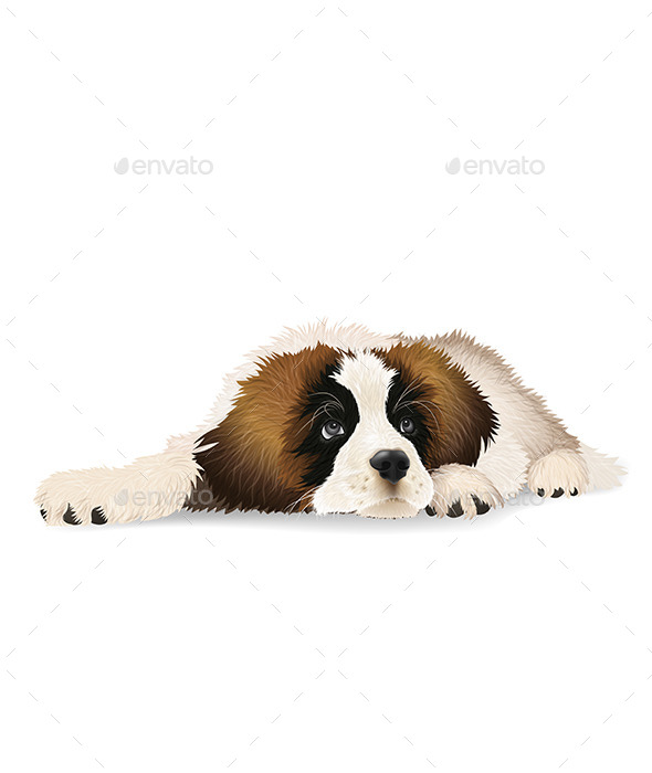 Puppy - Animals Characters