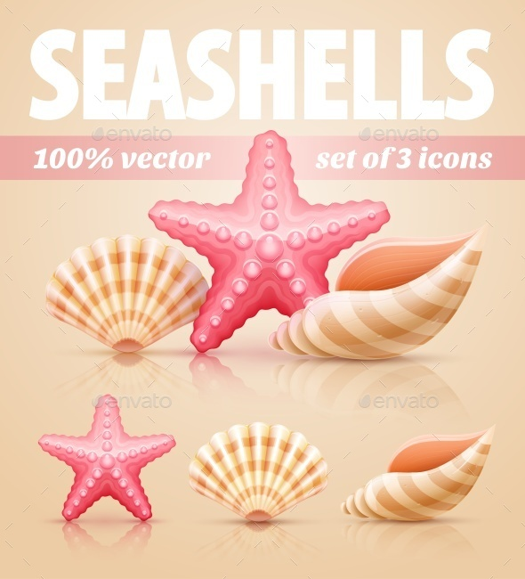Set of Summer Sea Shells and Starfish Icons - Organic Objects Objects
