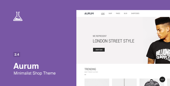 Aurum – Minimalist Shopping Theme