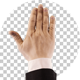 Hand Touch Gestures - VideoHive Item for Sale