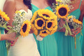 Bride and bridesmaids with sunflowers bouquet - PhotoDune Item for Sale