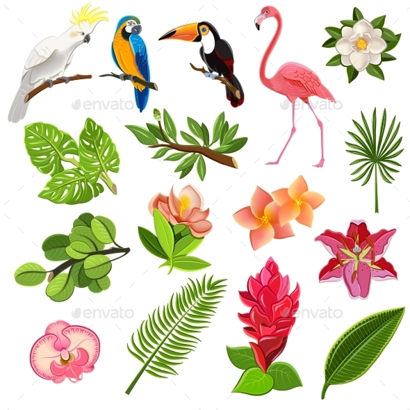 Tropical Birds and Plants Pictograms Set - Miscellaneous Vectors