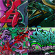 Graffiti Wall Texture set - GraphicRiver Item for Sale