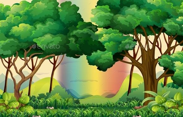 Forest - Landscapes Nature
