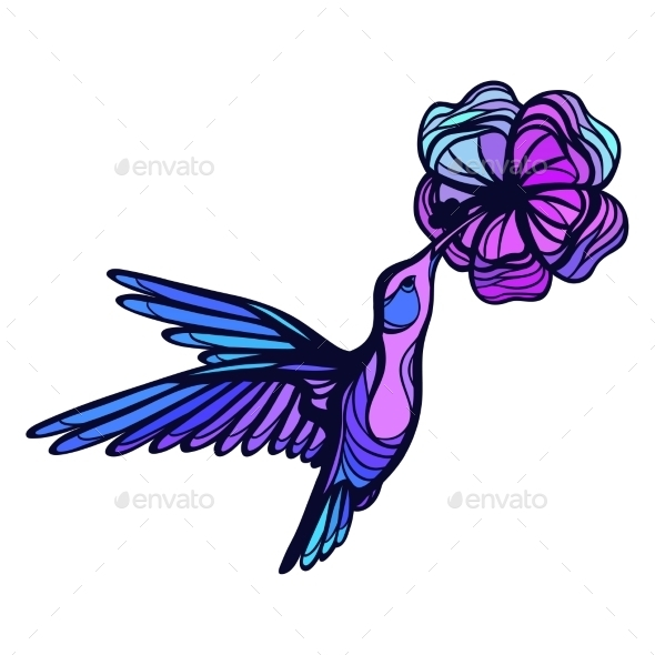 Flying Tropical Hummingbird On White Background - Flowers & Plants Nature