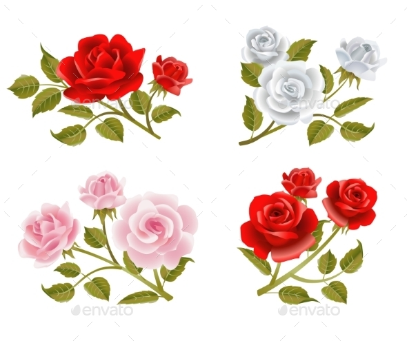 Rose Buttonholes - Flowers & Plants Nature