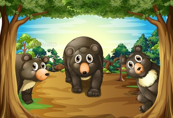 Bears and Jungle - Animals Characters